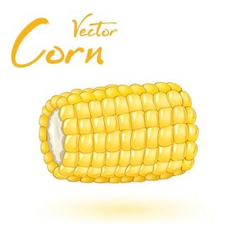 Onderdeel van maïs noggin, kleine gele gevitamineerde korrels, biologische en gezonde snack
