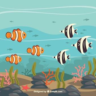 Onderwater achtergrond met verschillende vissen
