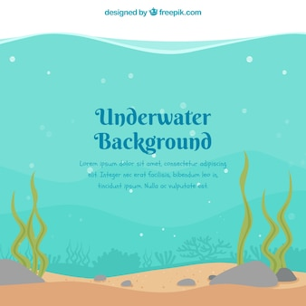 Onderwaterachtergrond met zeewieren