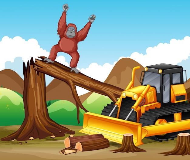 Ontbossingscène met aap en bulldozer
