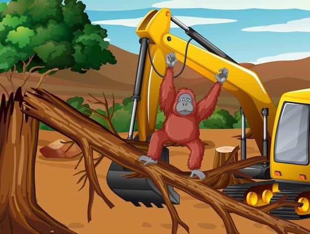 Ontbossingscène met aap en tractor