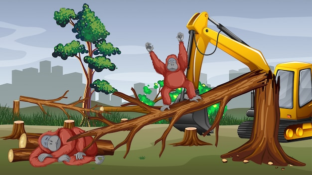 Ontbossingscène met tractor scherpe bomen