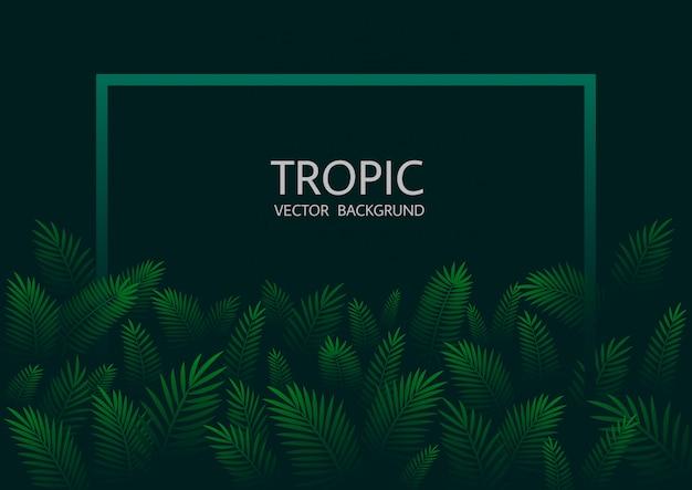 Ontwerp met exotische tropische palmbladeren en belettering.