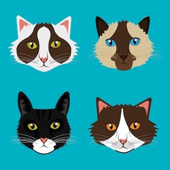 Ontwerp met huisdierenkat.