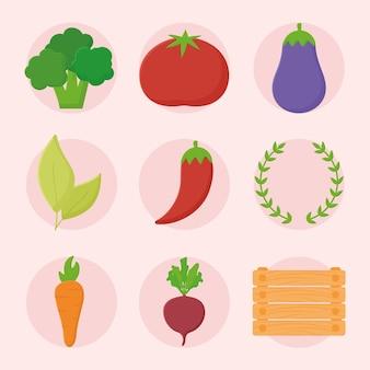 Ontwerp met negen groenten