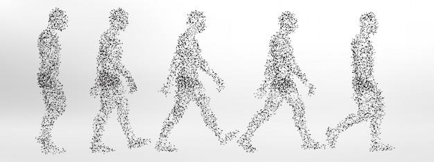 Op moleculen gebaseerde loopcyclus van het menselijk lichaam