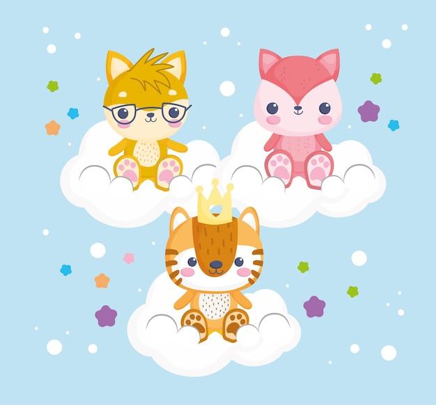 Opgezette dieren op wolken