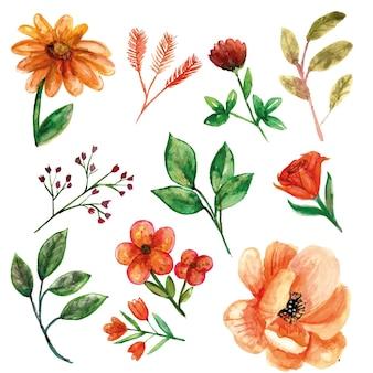 Oranje bloem met bladeren en extra bloem
