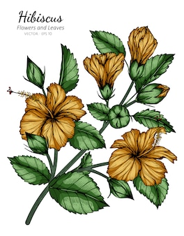 Oranje hibiscusbloem en bladtekeningillustratie met lijnkunst op wit.