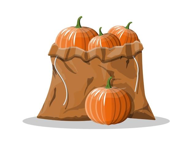 Oranje pompoengroente in canvas zak