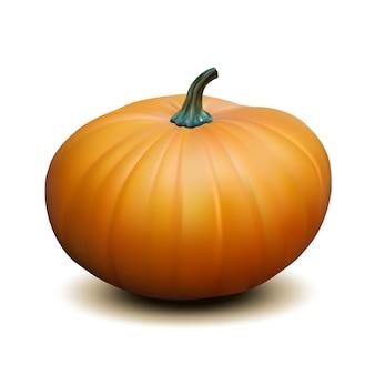 Oranje realistische pompoen op witte achtergrond, oogst thanksgiving-symbool. illustratie