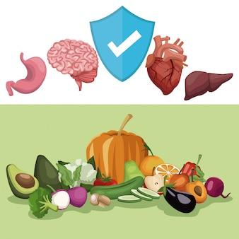 Organen en schild symbool groenten en fruit gezonde voeding