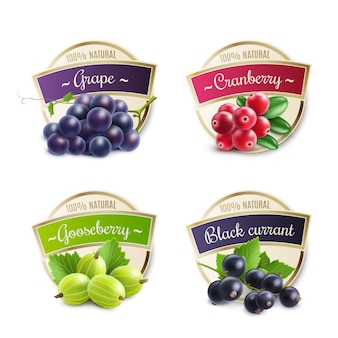 Organic berries labels collection