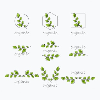 Organisch bladlogo