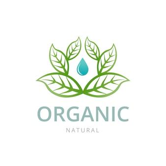 Organisch embleemmalplaatje met blad en druppel water.