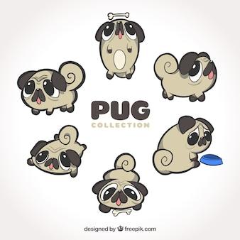 Originele verscheidenheid aan grappige pugs