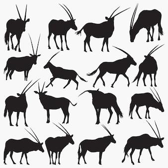 Oryx silhouetten