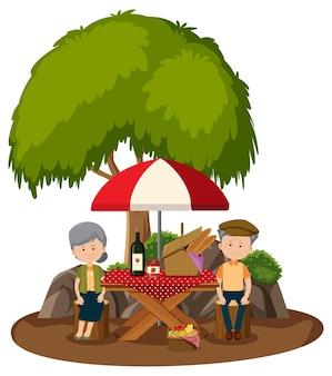 Oud paar die picknick in het geïsoleerde park doen