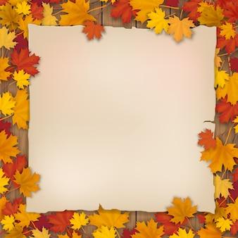 Oud vel papier in de gevallen bladeren van een esdoorn