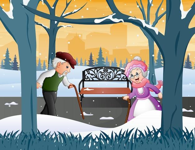 Oude grootouders in de winter park illustratie