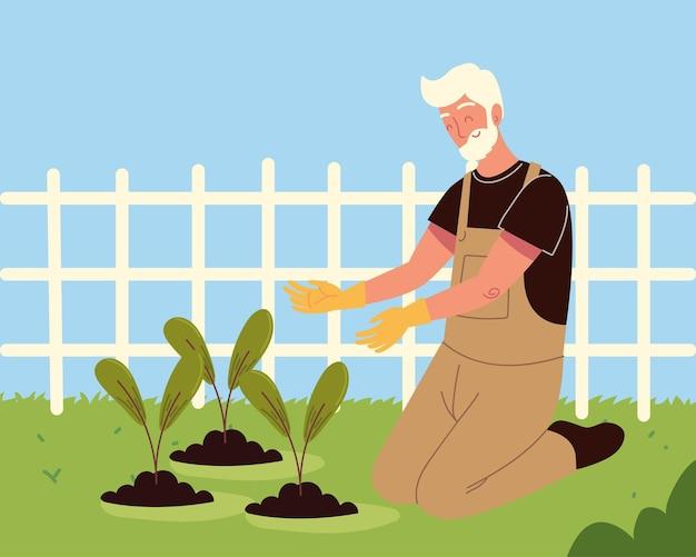 Oude man aan het planten in het veld