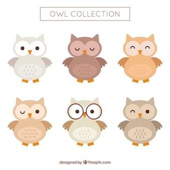 Owl ingesteld