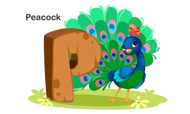 P voor peacock