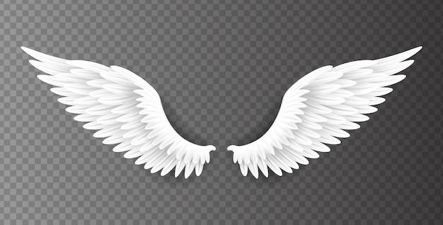 Paar mooie witte engelenvleugels die op transparante achtergrond, 3d realistische illustratie worden geïsoleerd. spiritualiteit en vrijheid