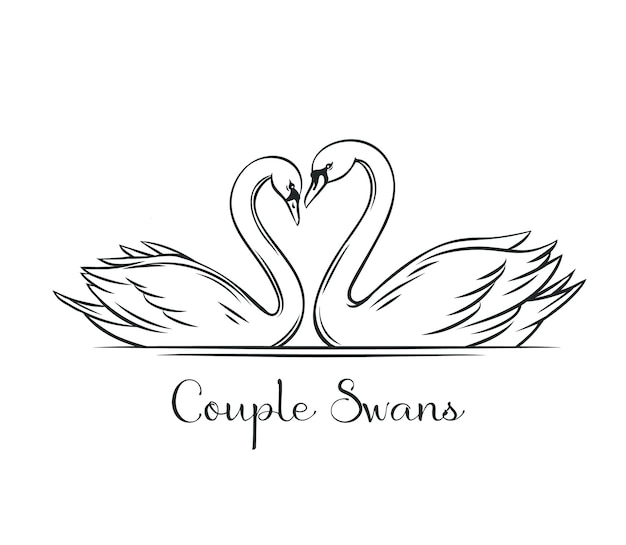 Paar zwanen overzicht. paar romantische vogels voor het ontwerp van de huwelijksuitnodiging.