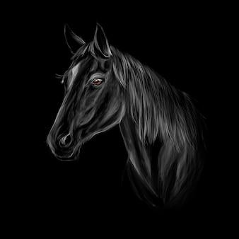 Paard hoofd portret op zwarte achtergrond vector illustratie van verf