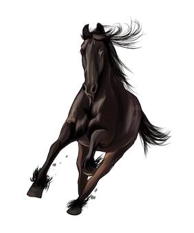 Paard loopt in galop van veelkleurige verf splash van aquarel gekleurde tekening realistisch