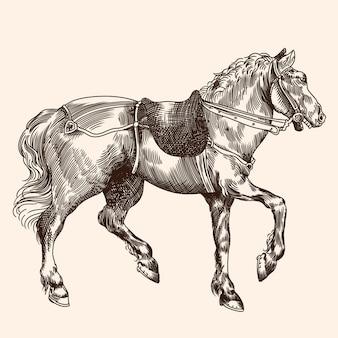 Paard met zadel