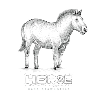 Paard staan, met de hand getekende dieren illustratie