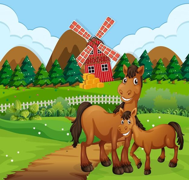Paarden in boerderij scène