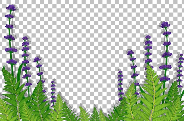 Paars bloemenveld op transparante achtergrond