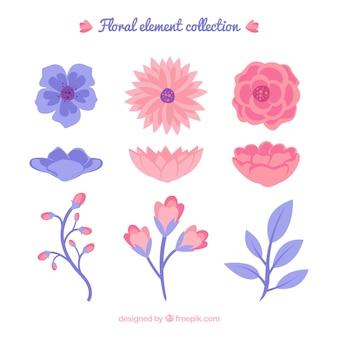 Paars en roze bloemenelementeninzameling