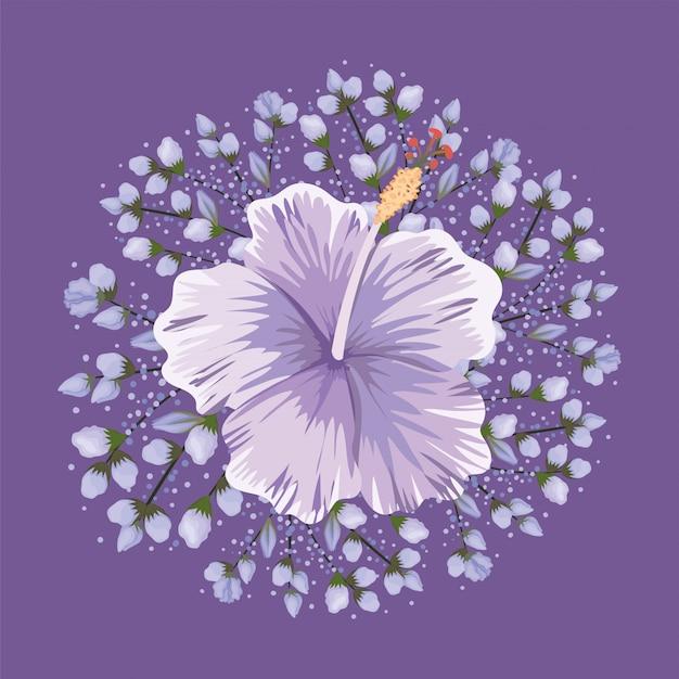 Paars hawaiiaans bloem schilderij ontwerp, natuurlijke bloemen natuur plant ornament tuindecoratie en plantkunde thema illustratie