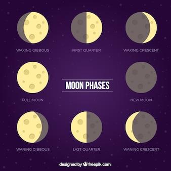 Paarse achtergrond met platte fasen van de maan
