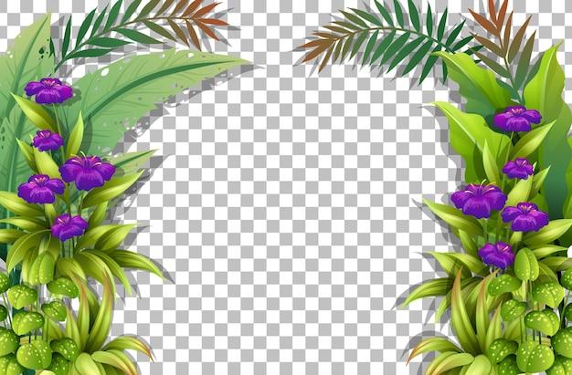 Paarse bloem en bladeren frame sjabloon op transparante achtergrond