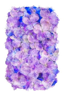 Paarse bloemen en kleurrijke achtergrond aquarel
