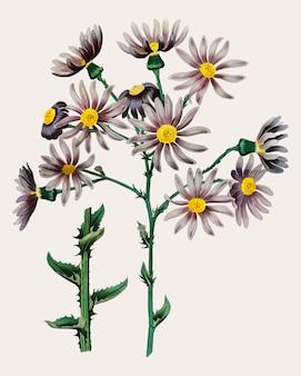 Paarse bloemtak