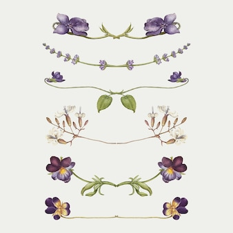 Paarse bloemverdeler bloei vector set, remix van the model book of calligraphy joris hoefnagel en georg bocskay