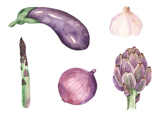 Paarse groenten in aquarel stijl
