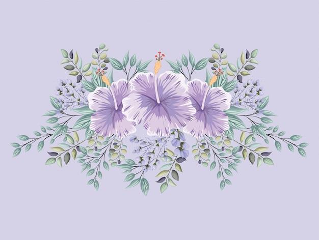 Paarse hawaiiaanse bloemen met bladeren schilderij ontwerp, natuurlijke bloemen natuur plant ornament tuindecoratie en plantkunde thema illustratie