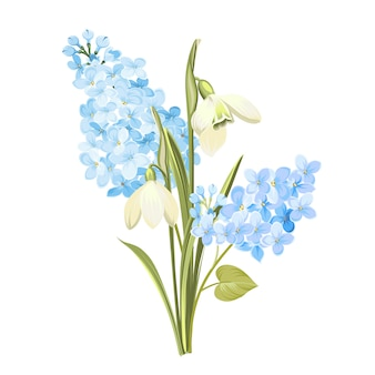 Paarse lila bloemen van syringa en witte galanthus.