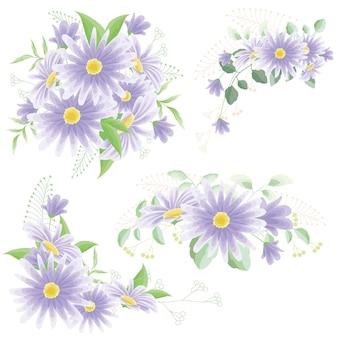 Paarse madeliefjeboeketten bloemen