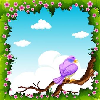 Paarse vogel op de tak