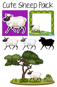 Pack van schattige schapen