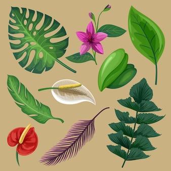 Pack van tropische bloemen en bladeren