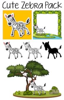 Pack van zebra pack
